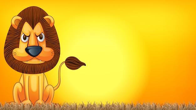 Een leeuw bij zonsondergangsjabloon