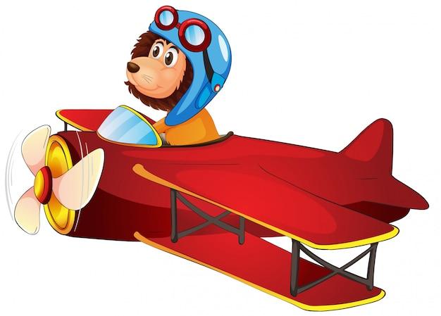 Een leeuw die klassiek vliegtuig berijdt