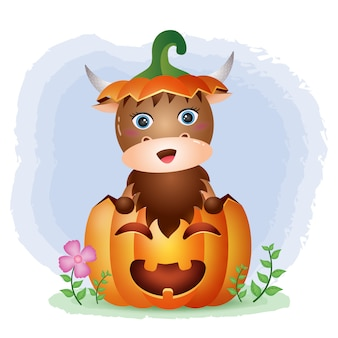 Een leuke buffel in de halloween-pompoen