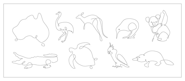 Een lijn set australische dieren koala en kaketoe schets kangoeroe en kiwi doorlopende lijn