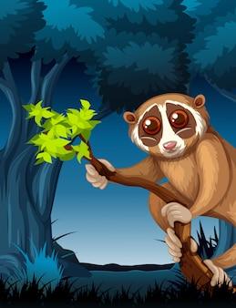Een lori in een donker bos