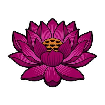 Een lotus geïsoleerd op wit