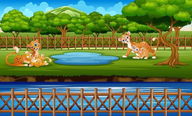 Een luipaardfamilie die van aard in kooi geniet