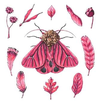 Een nachtvlinder met rode vleugels.