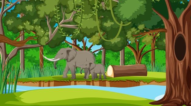 Een olifantenmoeder en baby in een bos- of regenwoudscène met veel bomen
