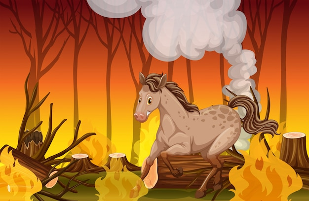 Een paard dat in het bos van het wildvuur loopt