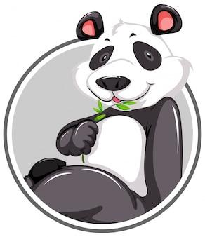 Een panda-stickermalplaatje