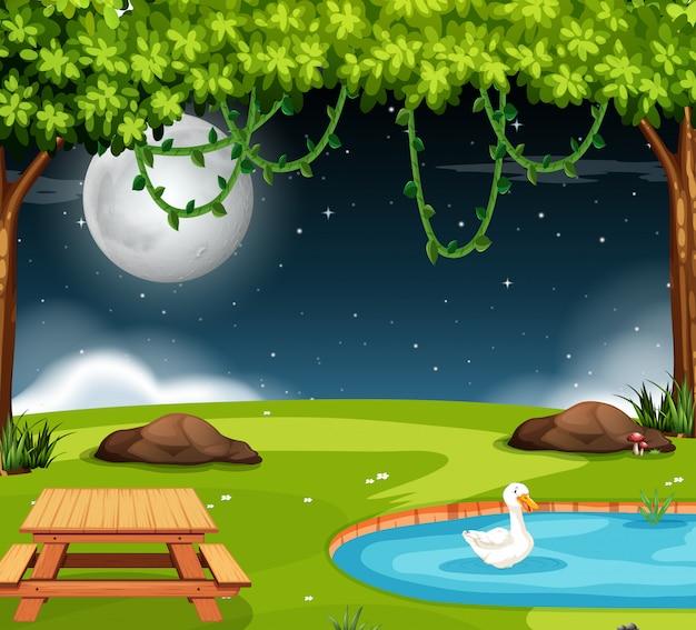 Een parkscène bij nacht