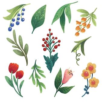 Een reeks illustraties met kruiden, bloemen, takken en bessen, rode bessen, blauwe bessen, tulpen, gele bloemen, erwten, bladeren