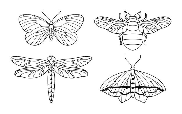 Een reeks insectenpictogramcontouren in een minimalistische trendy stijl. lineaire vectorillustraties van vlinders, hommels en libellen om logo's te maken voor schoonheidssalons, massages, spa's, sieraden, tatoeages