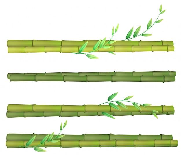 Een reeks van bamboe op witte achtergrond