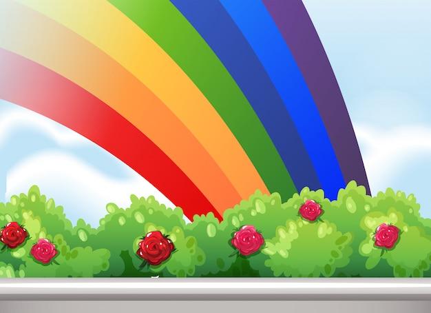 Een regenboog aan de hemel