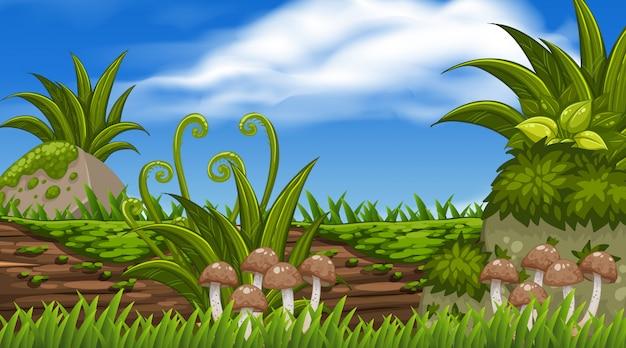 Een scène van het natuurlandschap