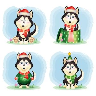 Een schattige husky hond kerst karakters collectie
