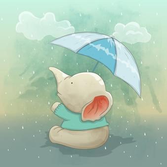 Een schattige olifant geniet van de regen
