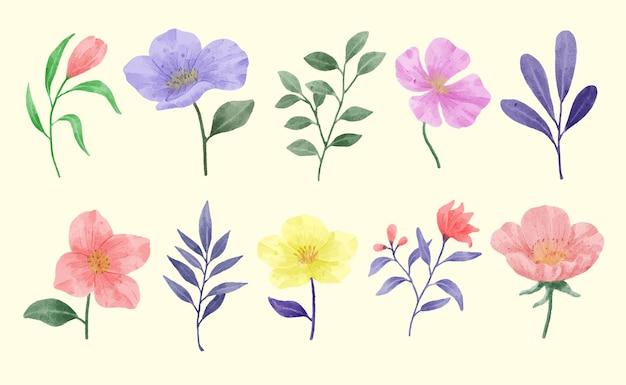 Een set bloemen beschilderd met waterverf om verschillende kaarten en wenskaarten te begeleiden.