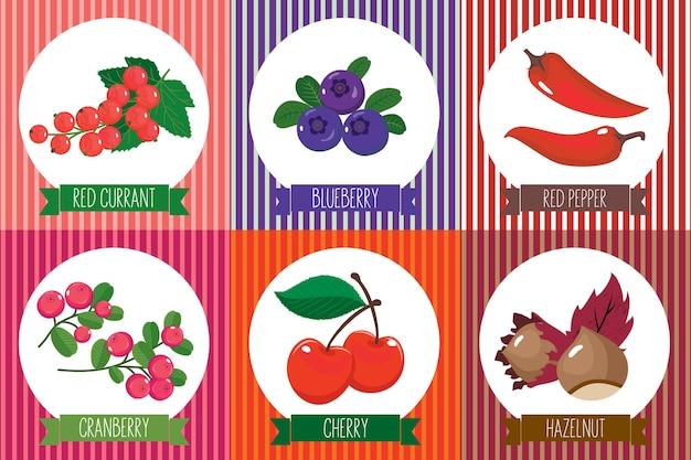 Een set kaarten met vegetarisch eten in het frame. vector, geïsoleerde, witte achtergrond.