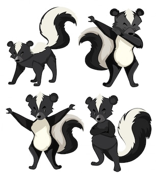 Een set skunk