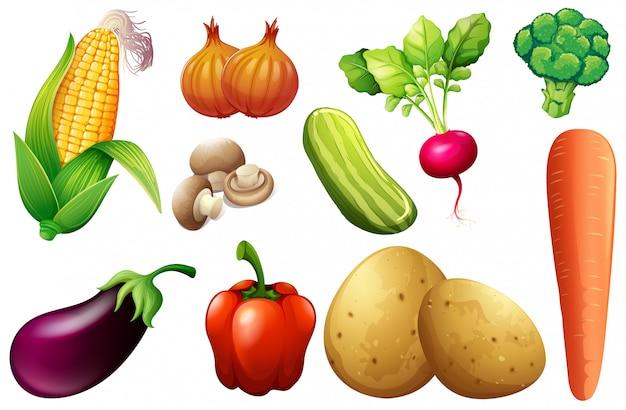 Een set van biologische groenten