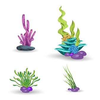 Een set van koralen en algen