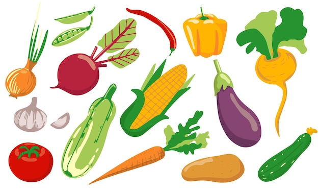 Een set van verschillende groenten. veganistisch gezond eten