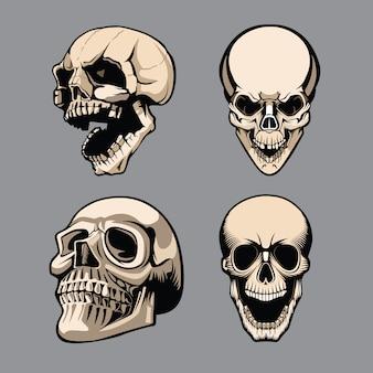 Een set van vier schedels in verschillende posities