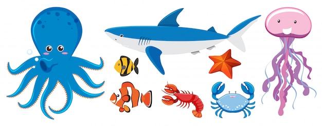 Een set zeedieren