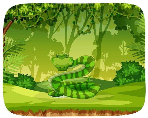 Een slang in de jungle