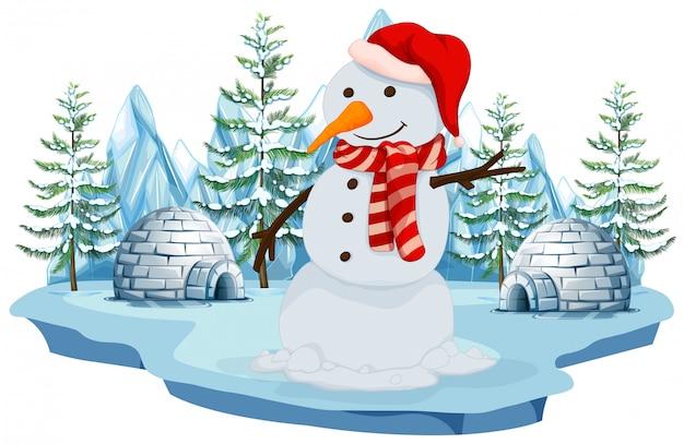 Een sneeuwpop in norh pole