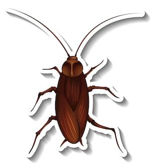 Een stickersjabloon met bovenaanzicht van een geïsoleerde kakkerlak