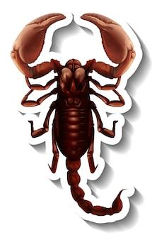 Een stickersjabloon met bovenaanzicht van een geïsoleerde schorpioen