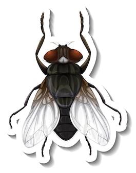 Een stickersjabloon met bovenaanzicht van geïsoleerde vlieg