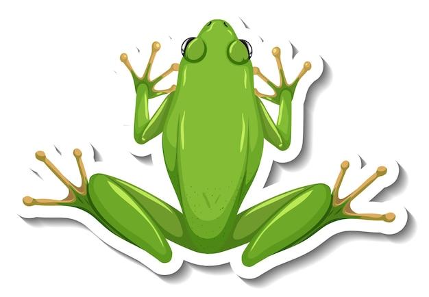 Een stickersjabloon met bovenaanzicht van groene kikker geïsoleerd
