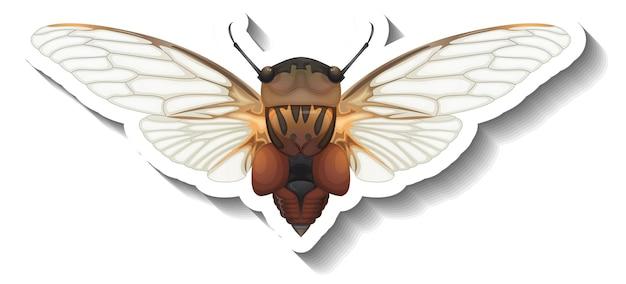Een stickersjabloon met bovenaanzicht van honingbij geïsoleerd
