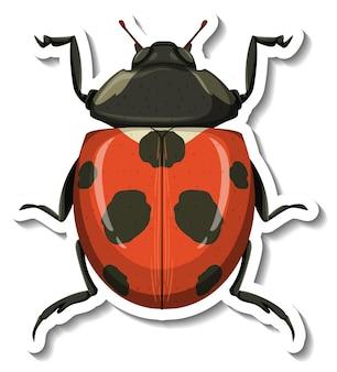 Een stickersjabloon met een geïsoleerd lieveheersbeestje