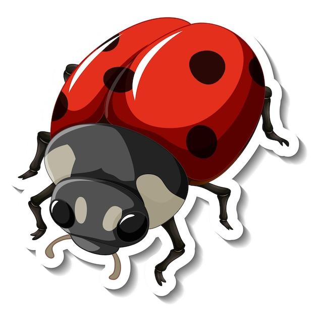 Een stickersjabloon met een rood lieveheersbeestje geïsoleerd