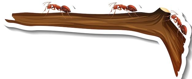Een stickersjabloon met veel mieren die op een geïsoleerde tak lopen