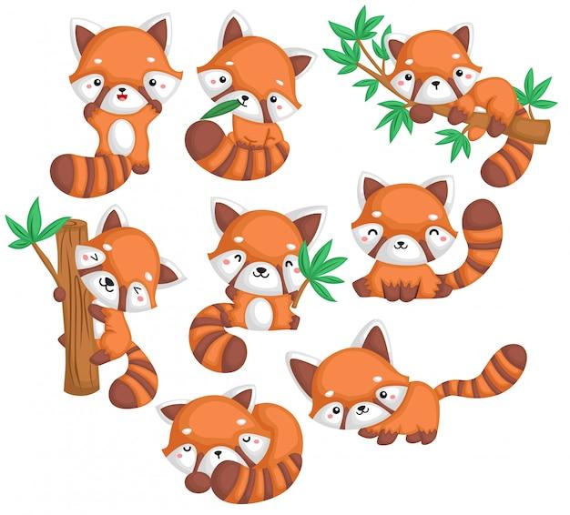 Een vector van veel rode panda's in veel poses