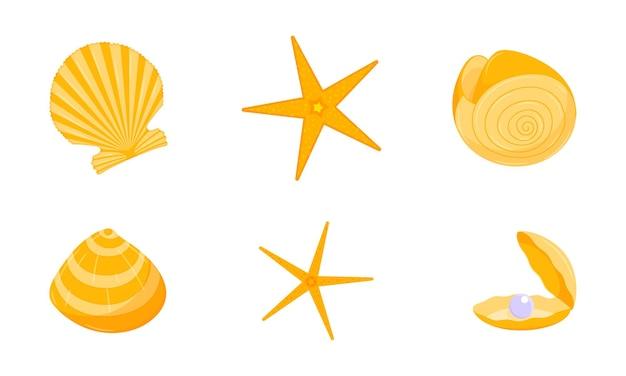 Een verzameling gele schelpen en zeesterren.