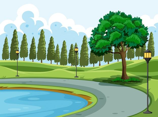 Een vijver in het park