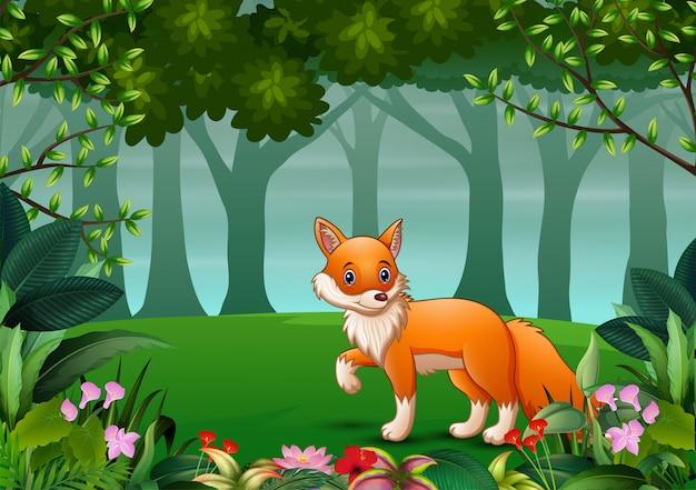 Een vos die prooi zoekt bij bosscène