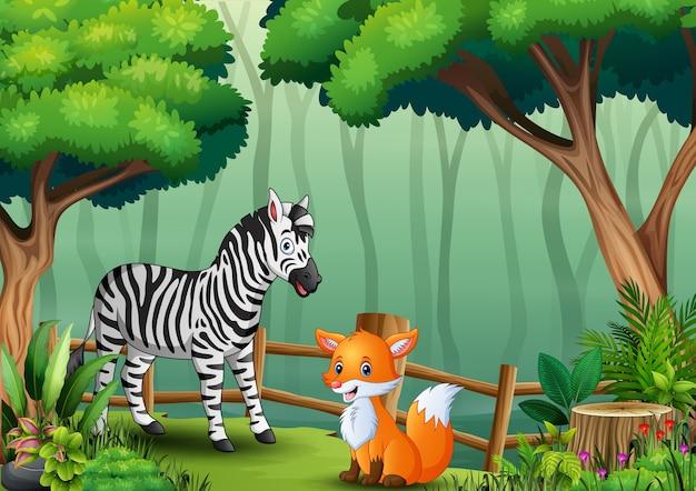 Een zebra en een vos binnen het hek bij bos