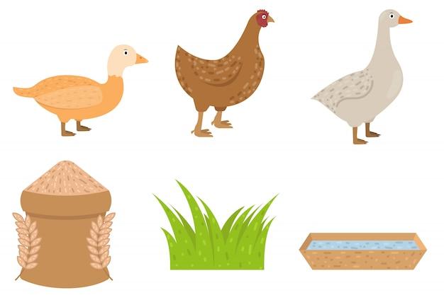 Eend, gans, kippen dier in vlakke stijl, voedsel voor pluimvee vectorillustratie