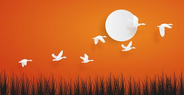 Eend of wintertalingsvogels die over het gras aan de hemel op zonsondergangachtergrond vliegen.