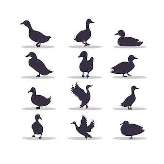 Eend silhouet vector illustratie ontwerp
