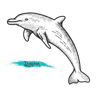 Eenlijn dolfijn ontwerp silhouet set