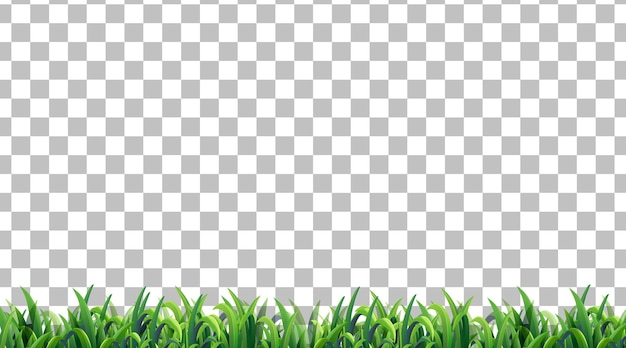 Eenvoudig grasveld op transparante achtergrond