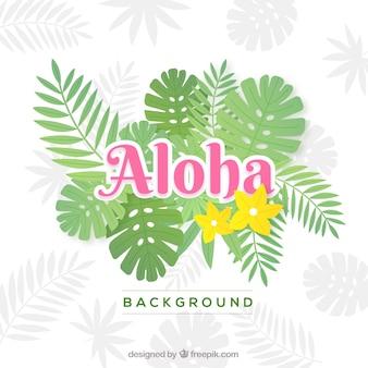 Eenvoudige aloha achtergrond