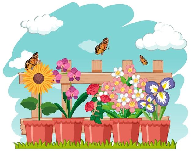 Eenvoudige bloem in de pot met vlinder