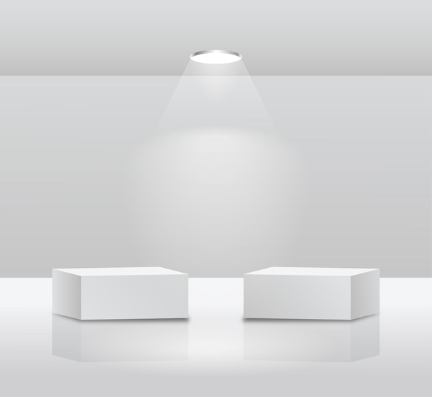 Eenvoudige twee podiumvertoning op witte achtergrond met doosconcept